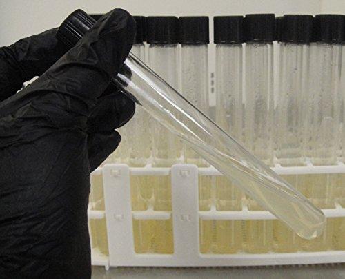 Prepared Potato Dextrose Agar Slants 16mm Tubes 10pk