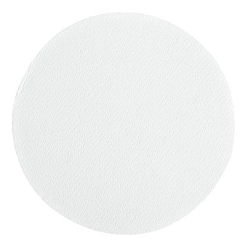 Whatman 10404139 OE66 Cellulose Acetate Membrane Filter 293mm Diameter 02 Micron