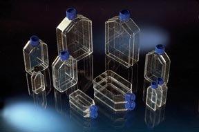 Nunclon Δ Flasks Culture area 25cm2 Angled neck