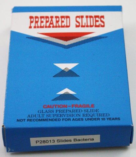 Prepared Microorganisms Slide Set Glass Microscope Slides - Set of 12