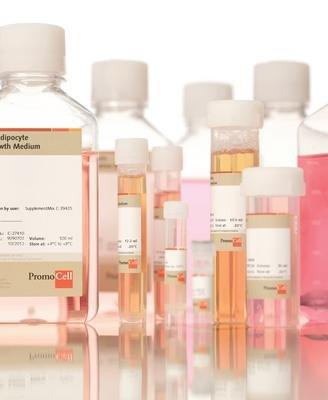 Preadipocyte Basal Medium - PreadipocyteAdipocyte Medium PromoCell
