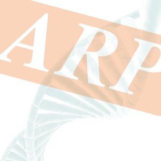 G Protein Coupled Receptor 48 Canine ELISA Kit