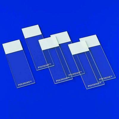 Microscope Adhesion Slides - Polysine Microscope Adhesion Slides Erie Scientific