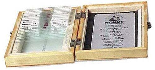 Konus The world of A Drop of Water Educational Microscope Slide Set