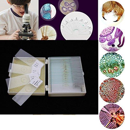 Microscope SlidesCharminer 25pcs Biology Glass Prepared Microscope Slides Lab Specimens for Basic Biological Science Education With Plastic Box