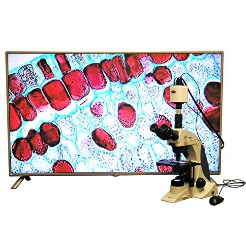 100X-1000X Plan Infinity Kohler Laboratory Research Microscope with 1080p HDMI Camera