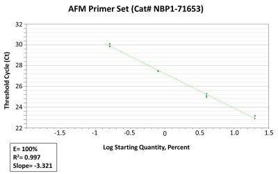 AFM primer 02 ml