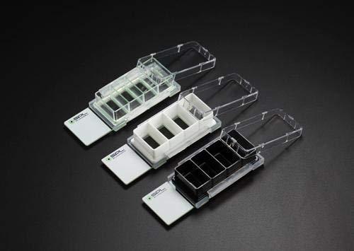 SPL Cell Culture Chamber Slide Black 4 Wells PS Frame Glass Slide PP Holder 05~13ml Sterile Case of 12  2 Pack of 6
