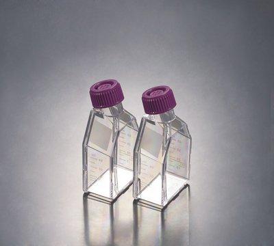 10861-568 - 25 mL - Tissue Culture Flask Non-Treated Sterilized Non-Pyrogenic - Case of 200